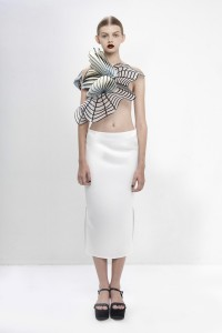 3D Printed Fashion Collection